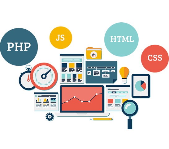 Web Design Training In India