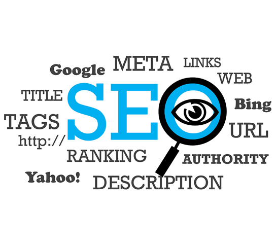 Best Seo Training In Mohali